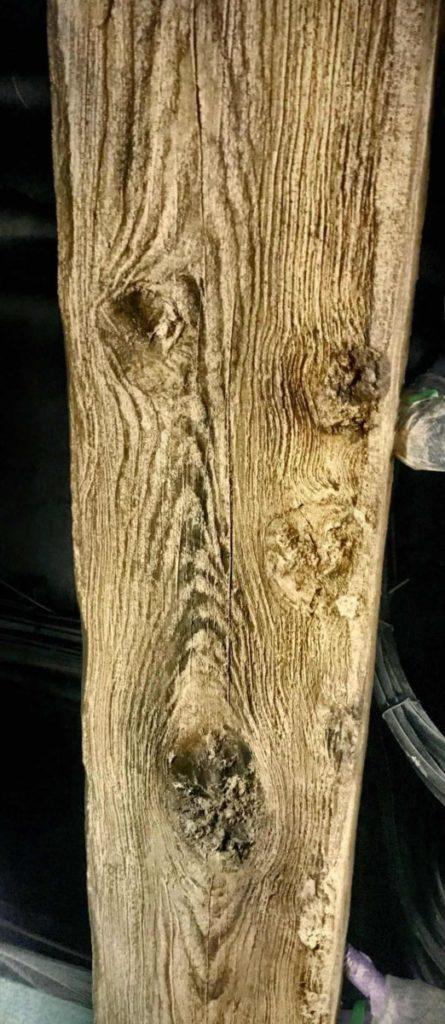 擬木事例集